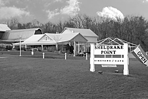 Sheldrake Vineyard Grounds
